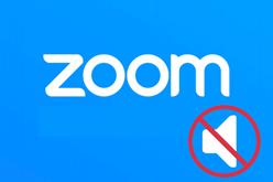 Нет звука в конференции Zoom. Что делать?